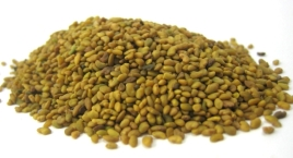 Alfalfa Seeds For Money Spells 150grms