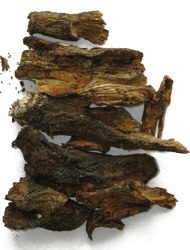 Burdock Root (Bat Weed) To Cleanse & Protect 150grms
