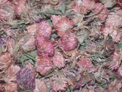 Red Clover For Love & Marriage 50grms