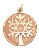 Tree of Life for Knowledge and Wisdom